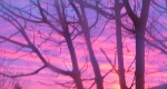 cropped-sunrise-over-burleson-0023.jpg