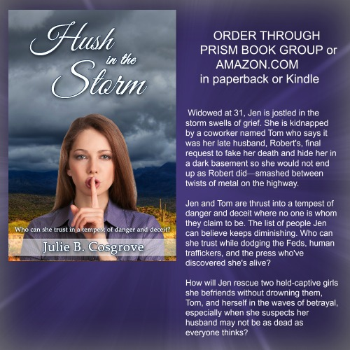 hush in the storm promo